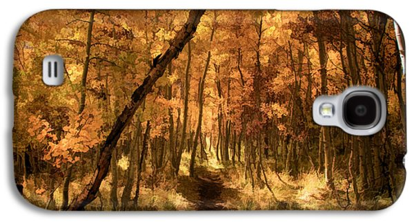 Buy Galaxy S4 Cases - Down the Golden Path Galaxy S4 Case by Donna Kennedy