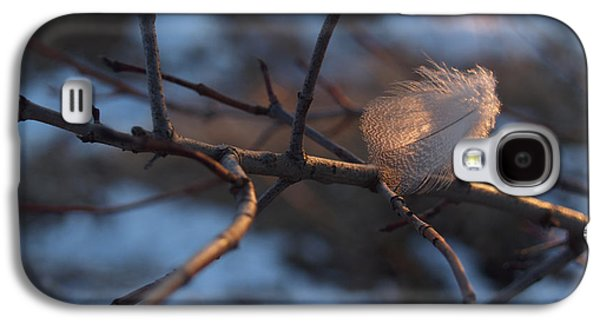 Downy Feather Backlit On Wintry Branch At Twilight Galaxy S4 Case by Anna Lisa Yoder