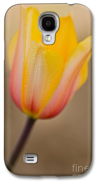 Bloosom Galaxy S4 Cases - Dreaming Galaxy S4 Case by Nick  Boren