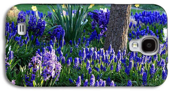 Sunlight On Flowers Galaxy S4 Cases - Dreaming of Spring Galaxy S4 Case by Carol Groenen