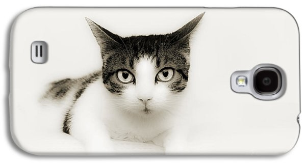 Character Portraits Mixed Media Galaxy S4 Cases - Dreamy Cat Galaxy S4 Case by Andee Design