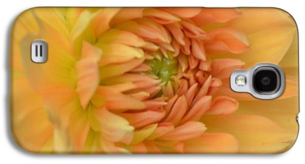 Nature Abstracts Galaxy S4 Cases - Dreamy Dahlia Galaxy S4 Case by Kathleen Struckle