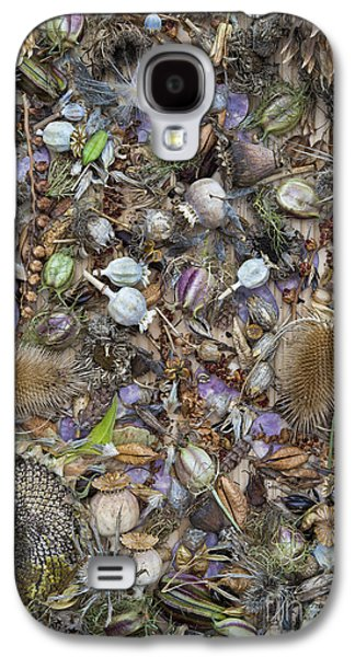 Dried Photographs Galaxy S4 Cases - Dried Flower Seeds Galaxy S4 Case by Tim Gainey