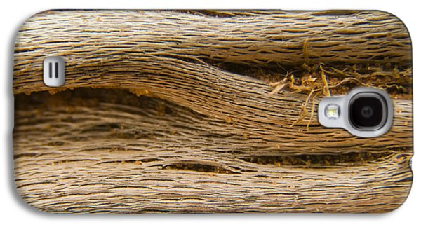 Interior Still Life Photographs Galaxy S4 Cases - Driftwood 1 Galaxy S4 Case by Adam Romanowicz