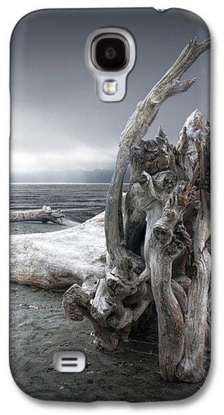 Foggy Beach Galaxy S4 Cases - Driftwood on the Beach Galaxy S4 Case by Randall Nyhof