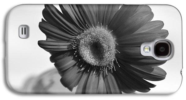 Original Photographs Galaxy S4 Cases - Dsc0143d1 Galaxy S4 Case by Kimberlie Gerner