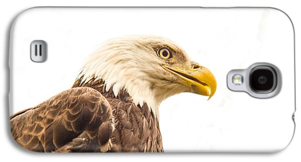 Preditor Galaxy S4 Cases - Eagle With Prey Spied Galaxy S4 Case by Douglas Barnett