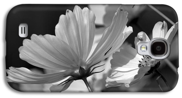 Early Dawns Light On Fall Flowers Bw 02 Galaxy S4 Case by Thomas Woolworth