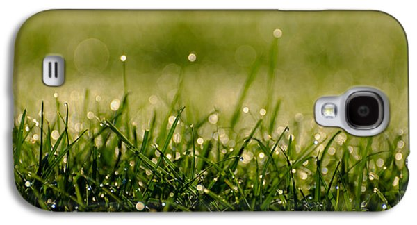 Ground Level Galaxy S4 Cases - Early Morning Dew Galaxy S4 Case by Mountain Dreams
