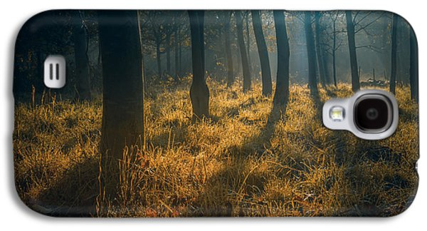 Fall Grass Galaxy S4 Cases - Early morning woodland walk Galaxy S4 Case by Chris Fletcher
