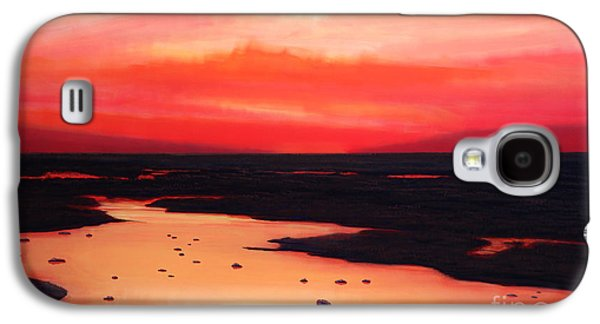 Print On Canvas Galaxy S4 Cases - Earth Swamp Galaxy S4 Case by Paul Meijering