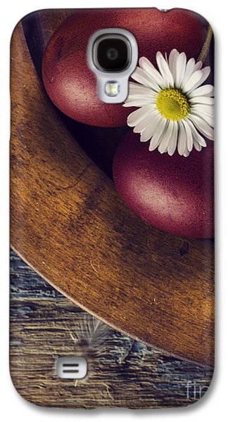 Still Life Pyrography Galaxy S4 Cases - Easter Eggs Galaxy S4 Case by Jelena Jovanovic