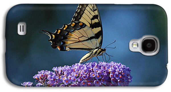 Indiana Flowers Galaxy S4 Cases - Eastern Tiger Swallowtail Butterfly Galaxy S4 Case by Sandy Keeton