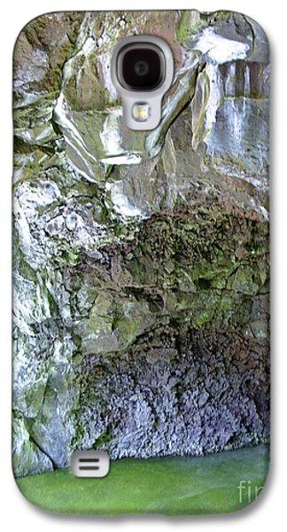 Alga Pyrography Galaxy S4 Cases - El Malpais Ice Cave 2 Galaxy S4 Case by Birgit Seeger-Brooks
