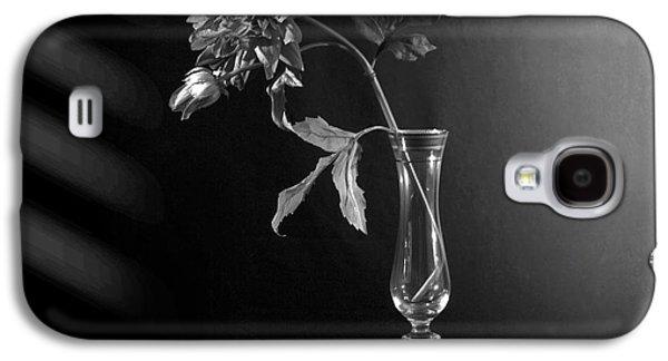 Orsillo Galaxy S4 Cases - Elegant Respect  Galaxy S4 Case by Mark Ashkenazi