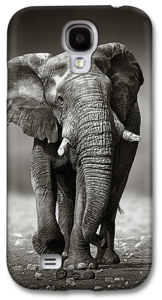 Elephant Approach From The Front Galaxy S4 Case by Johan Swanepoel