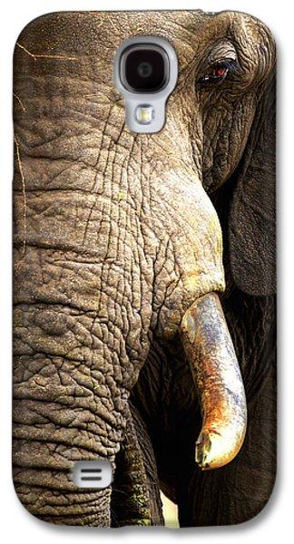 Teeth Galaxy S4 Cases - Elephant close-up portrait Galaxy S4 Case by Johan Swanepoel