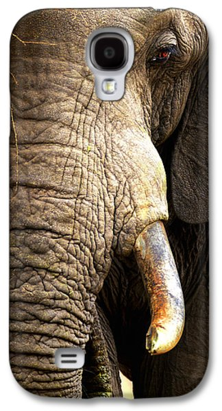 Freedom Galaxy S4 Cases - Elephant close-up portrait Galaxy S4 Case by Johan Swanepoel