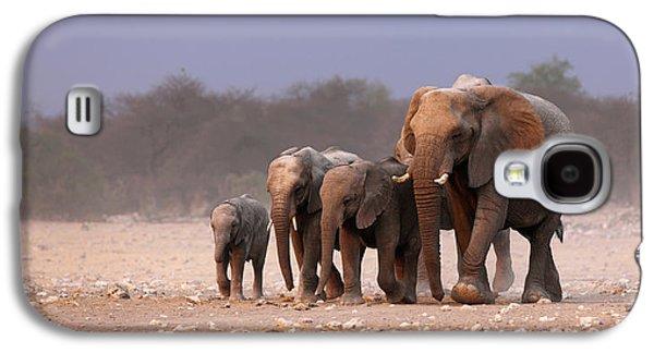 Elephant Herd Galaxy S4 Case by Johan Swanepoel