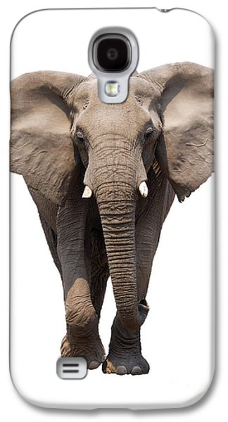 Cut Outs Galaxy S4 Cases - Elephant isolated Galaxy S4 Case by Johan Swanepoel