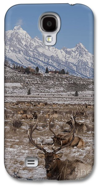 Refuge Galaxy S4 Cases - Elk and the Grand Tetons Galaxy S4 Case by Juli Scalzi