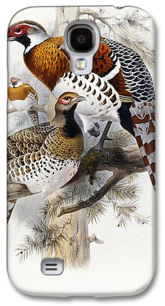 Feather Drawings Galaxy S4 Cases - Elliots Pheasant Galaxy S4 Case by Joseph Wolf