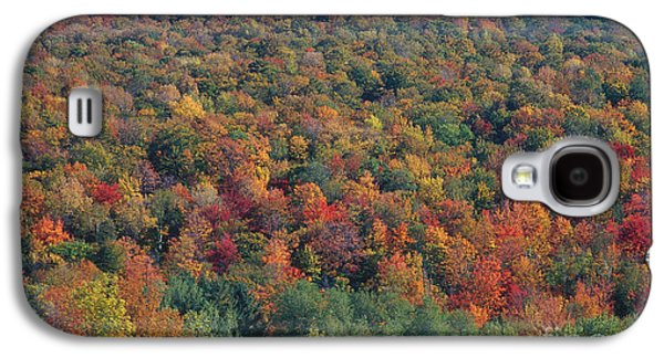 Fall Trees Fall Color Galaxy S4 Cases - Elmore Mountain, Vermont Galaxy S4 Case by Gregory G. Dimijian, M.D.