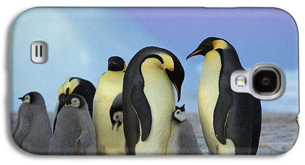 Emperor Penguin Parents And Chick Galaxy S4 Case by Frederique Olivier
