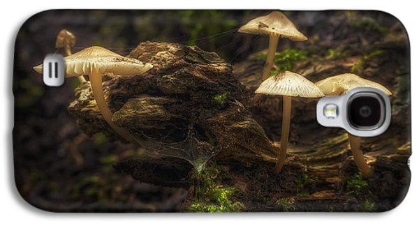 Toadstools Galaxy S4 Cases - Enchanted Forest Galaxy S4 Case by Scott Norris