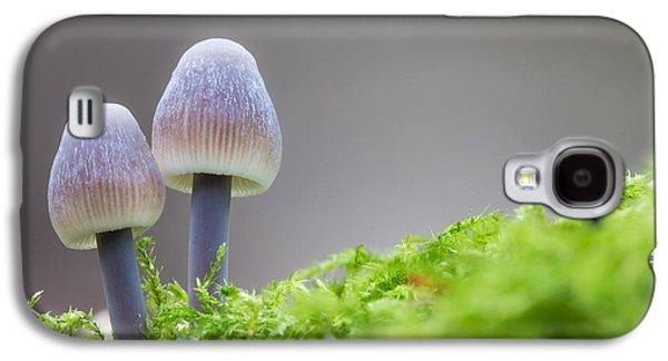Toadstools Galaxy S4 Cases - Enchanted Fungi Galaxy S4 Case by Ian Hufton
