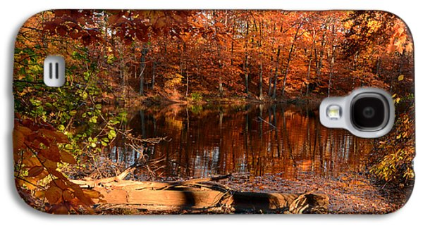 Reds Of Autumn Galaxy S4 Cases - End Of Path Galaxy S4 Case by Lourry Legarde