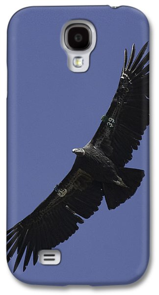 Endangered California Condor Galaxy S4 Case by Ram Vasudev