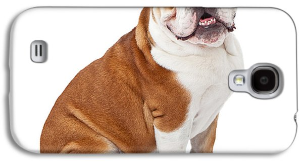 Guard Dog Galaxy S4 Cases - English Bulldog Sitting  Galaxy S4 Case by Susan  Schmitz