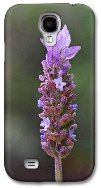 English Lavender Galaxy S4 Case by Rona Black