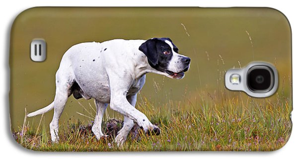 Dog Walking Galaxy S4 Cases - English Pointer Galaxy S4 Case by M. Watson