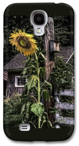 Wild Orchards Galaxy S4 Cases - Sunflower Country Galaxy S4 Case by Thomas Schoeller