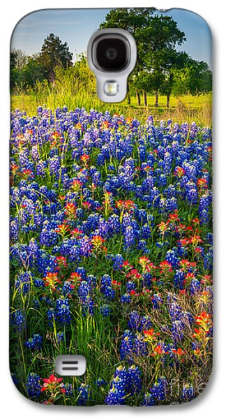 Mounds Galaxy S4 Cases - Ennis Bluebonnets Galaxy S4 Case by Inge Johnsson