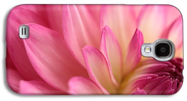 Flower Blooms Galaxy S4 Cases - Enticement Galaxy S4 Case by Connie Handscomb