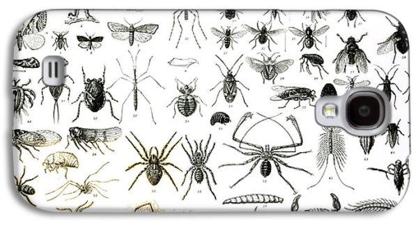 Entomology Myriapoda And Arachnida  Galaxy S4 Case by English School