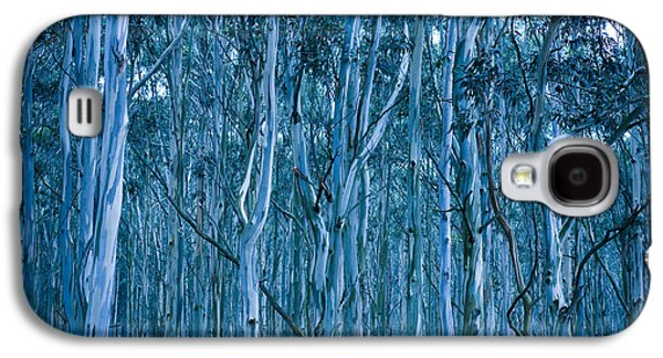 Blueish Galaxy S4 Cases - Eucalyptus Forest Galaxy S4 Case by Frank Tschakert