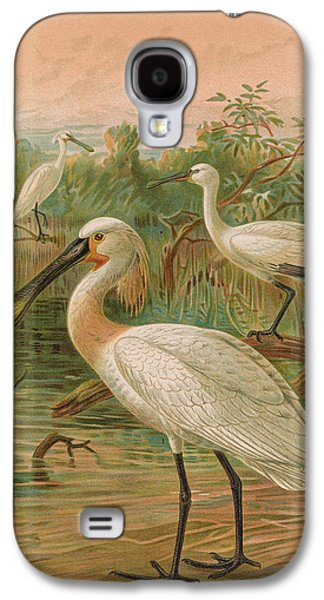 Eurasian Spoonbill Galaxy S4 Case by J G Keulemans