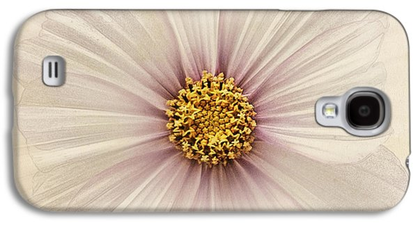 Close Focus Floral Galaxy S4 Cases - Evanescent Galaxy S4 Case by John Edwards