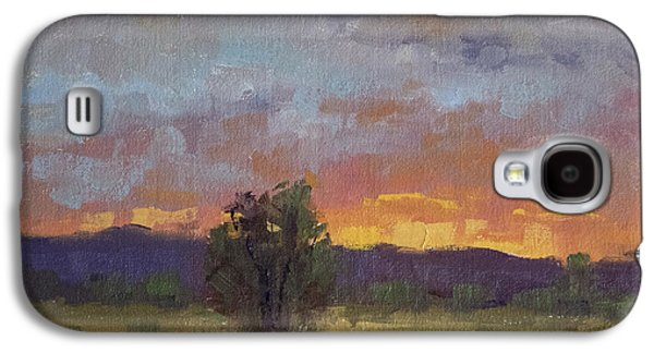 Fort Collins Paintings Galaxy S4 Cases - Evening Light at Fossil Creek Galaxy S4 Case by Bonnie Bowne
