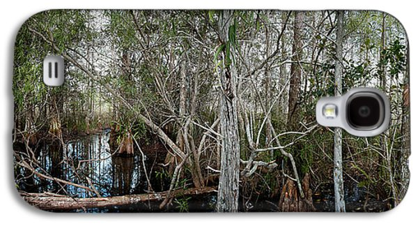 Everglades Swamp-1 Galaxy S4 Case by Rudy Umans