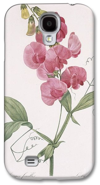 Cutting Galaxy S4 Cases - Everlasting Pea Galaxy S4 Case by Pierre Joseph Redoute