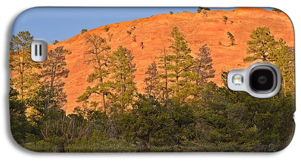 Scenic Drive Galaxy S4 Cases - Every Tree in Its Shadow Galaxy S4 Case by Christine Till
