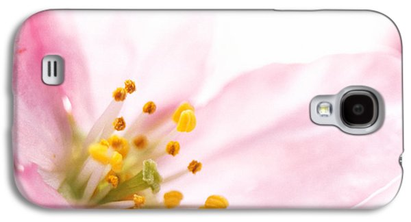 Designs In Nature Galaxy S4 Cases - Extreme Close Up Of Cherry Blossom Galaxy S4 Case by Panoramic Images