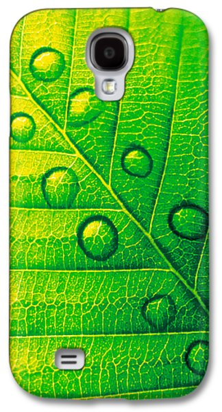 Indoor Still Life Galaxy S4 Cases - Extreme Close Up Of Leaf Vein Galaxy S4 Case by Panoramic Images