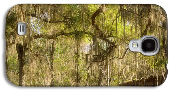Peaceful Scene Galaxy S4 Cases - Fabulous Spanish Moss Galaxy S4 Case by Christine Till