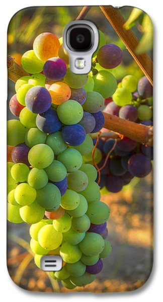 Vintner Galaxy S4 Cases - Fading light Galaxy S4 Case by Jean Noren